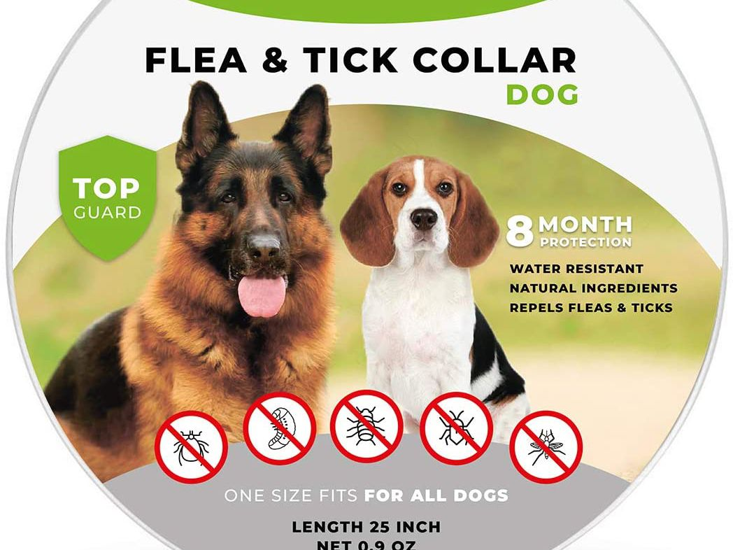 Long-lasting Flea Prevention Necks up to 12 Safe /& Waterproof Flea Collars Effective Up To 4 Months Dr Mercola Herbal Repellent Collar For Cats /& Kittens with Natural Active Ingredients Odorless