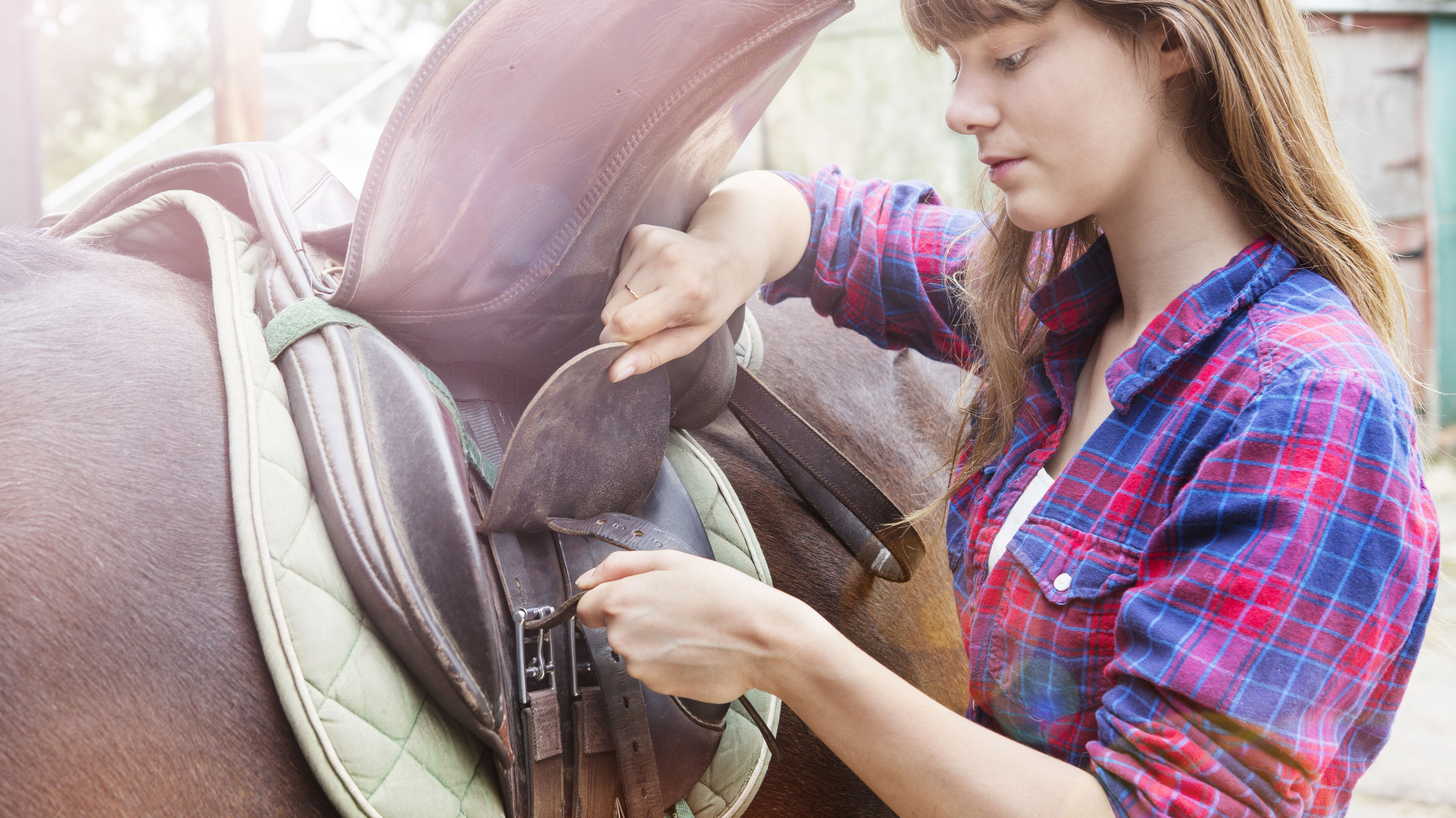 How Much Do Horse Saddles Cost?