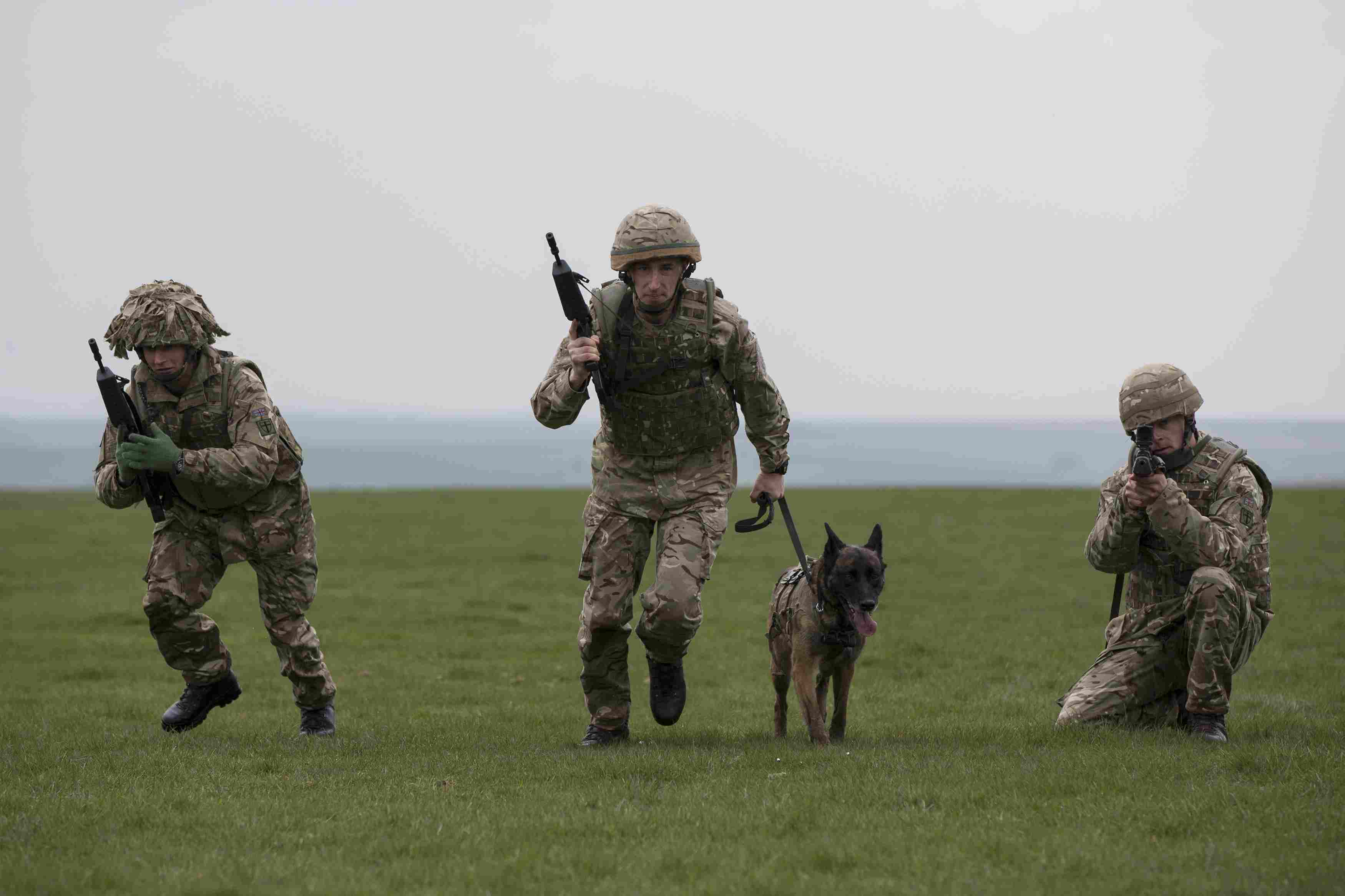 Soldiers with military dog