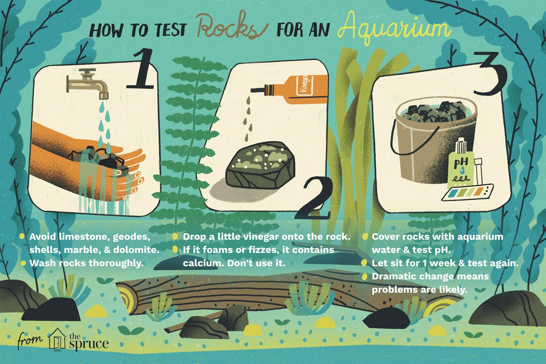 use aquarium in a sentence