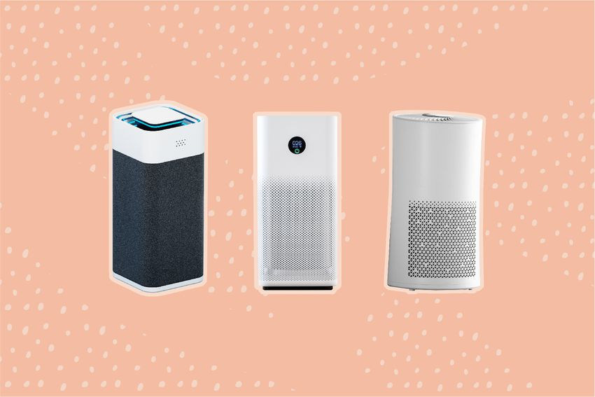 Best Air Purifiers for Pet Owners