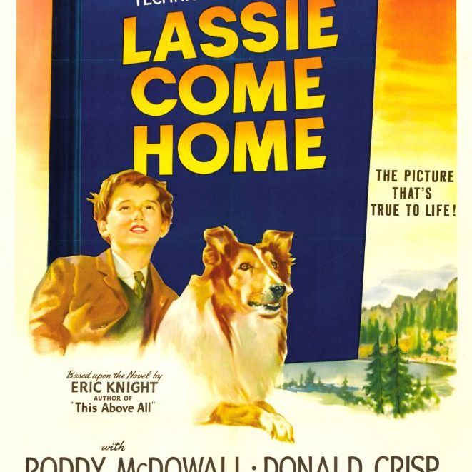 lassie come home dog movie