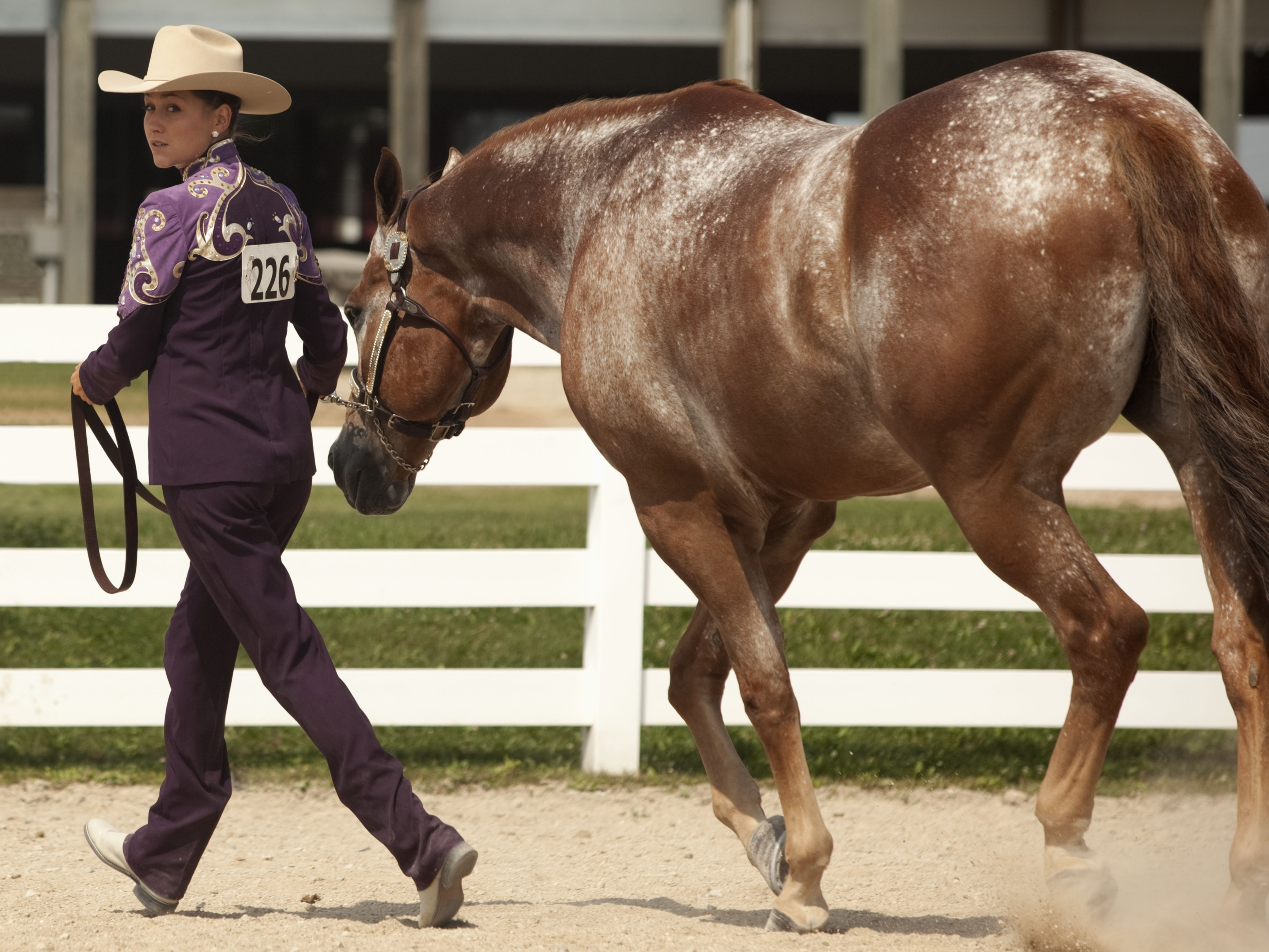 Clothes And Tack For First Western Horse Shows