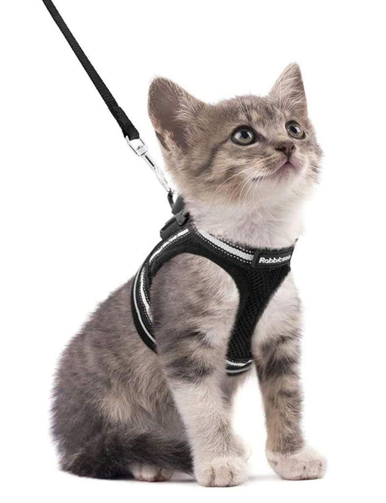 Rabbitgoo Escape Proof Vest Cat Harness