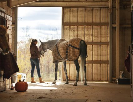 Teen Girl Caring for Horse in a Stable