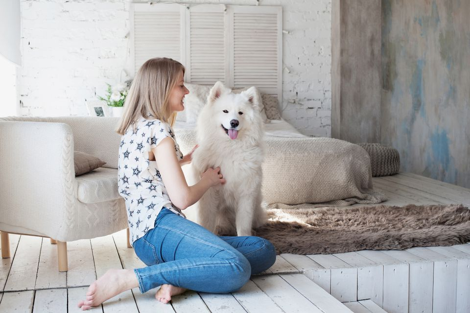 woman sitting on floor with big fluffy dog