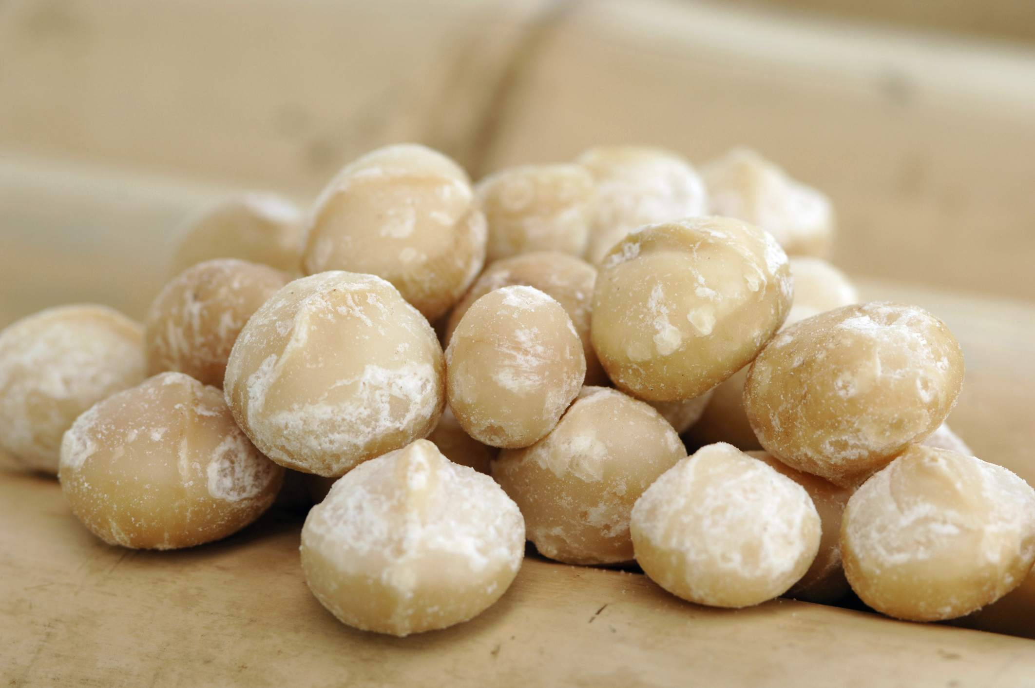 A pile of macadamia nuts.