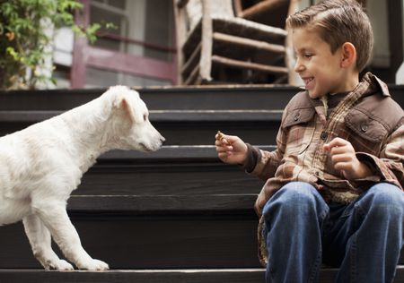 Reasons Why Your Dog Is Afraid of Kids and How to Stop It