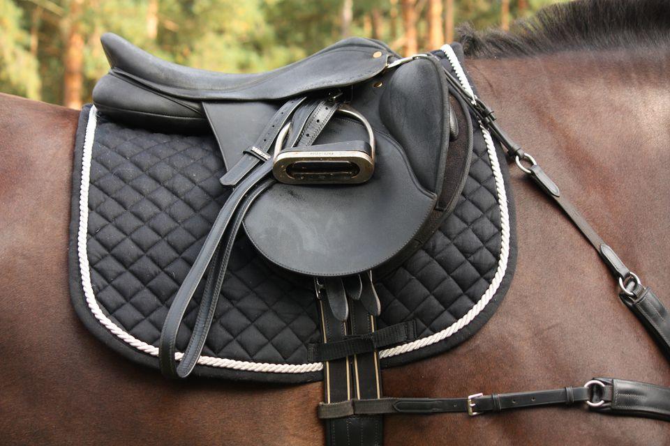 Black leather saddle on black horse