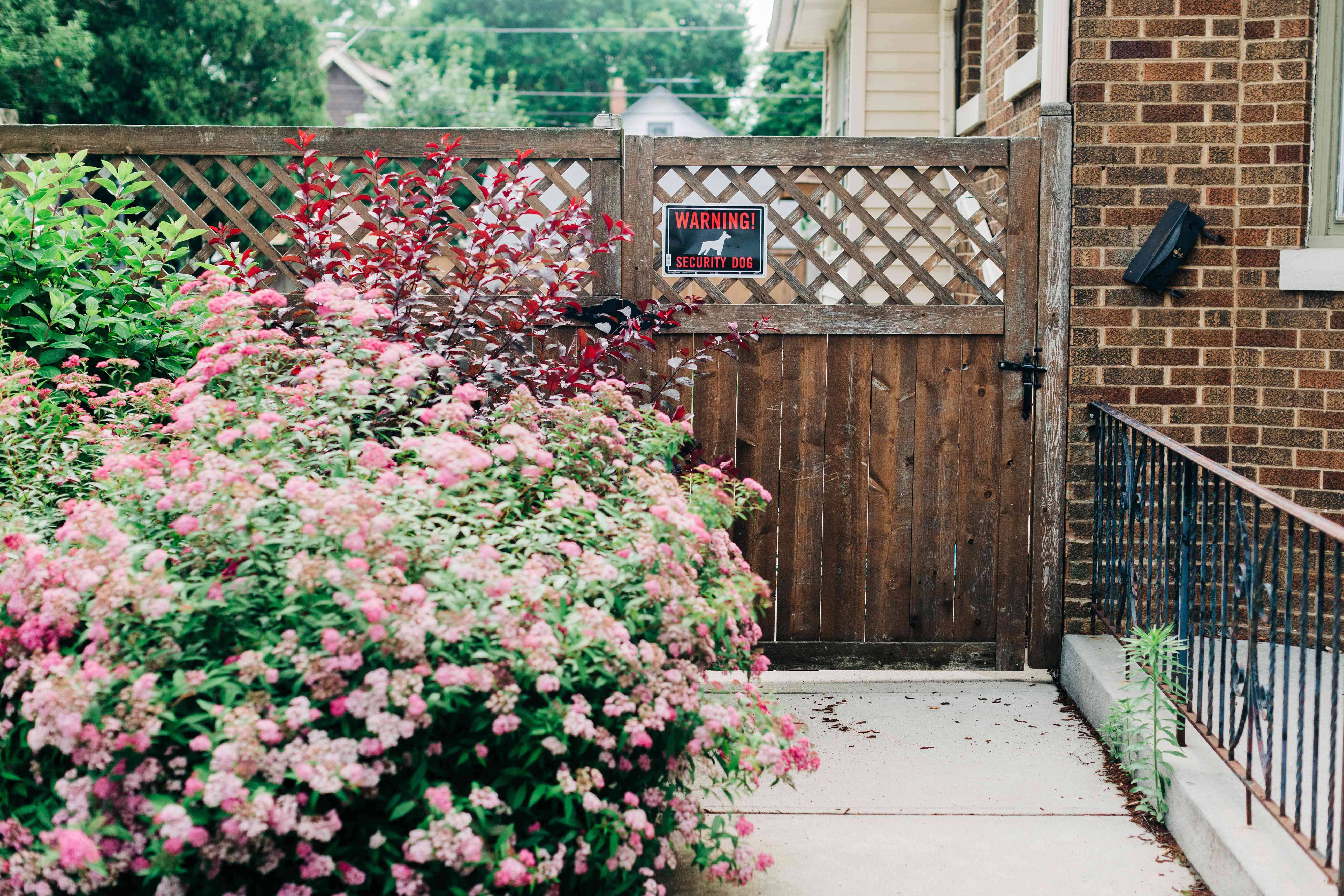 Wooden fence next to brick house with dog warning sign behind flower bushes