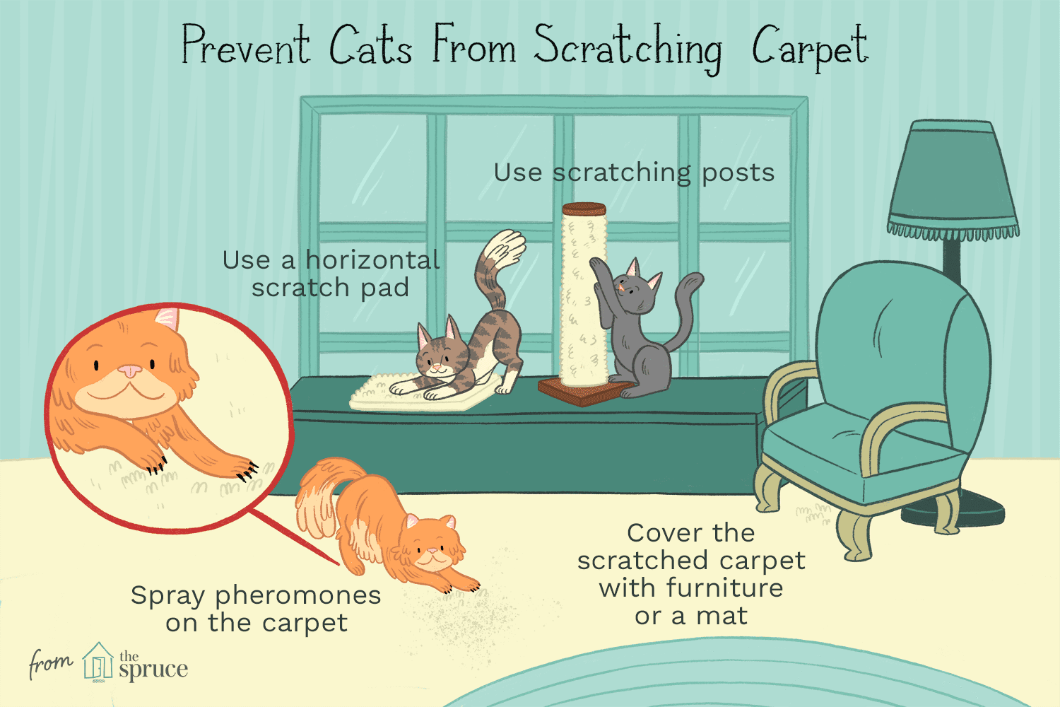 Ilration Of Cats Scratching Carpet And How To Stop It