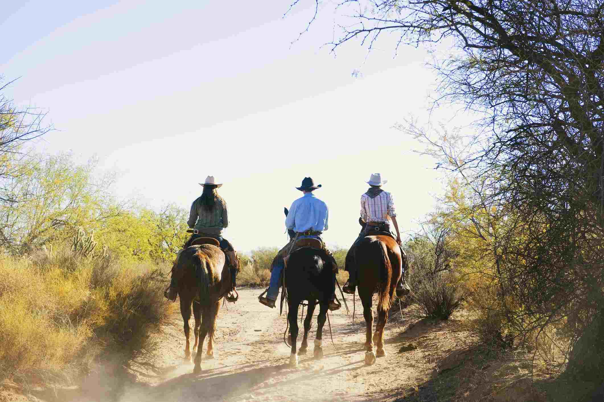 Ranchers riding horses