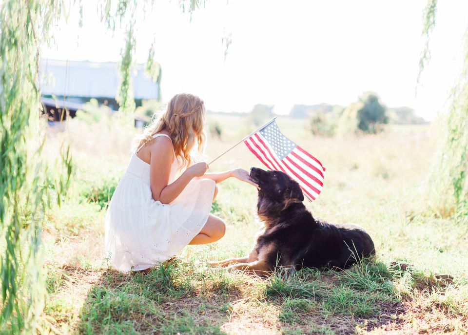 fourth of july with dogs