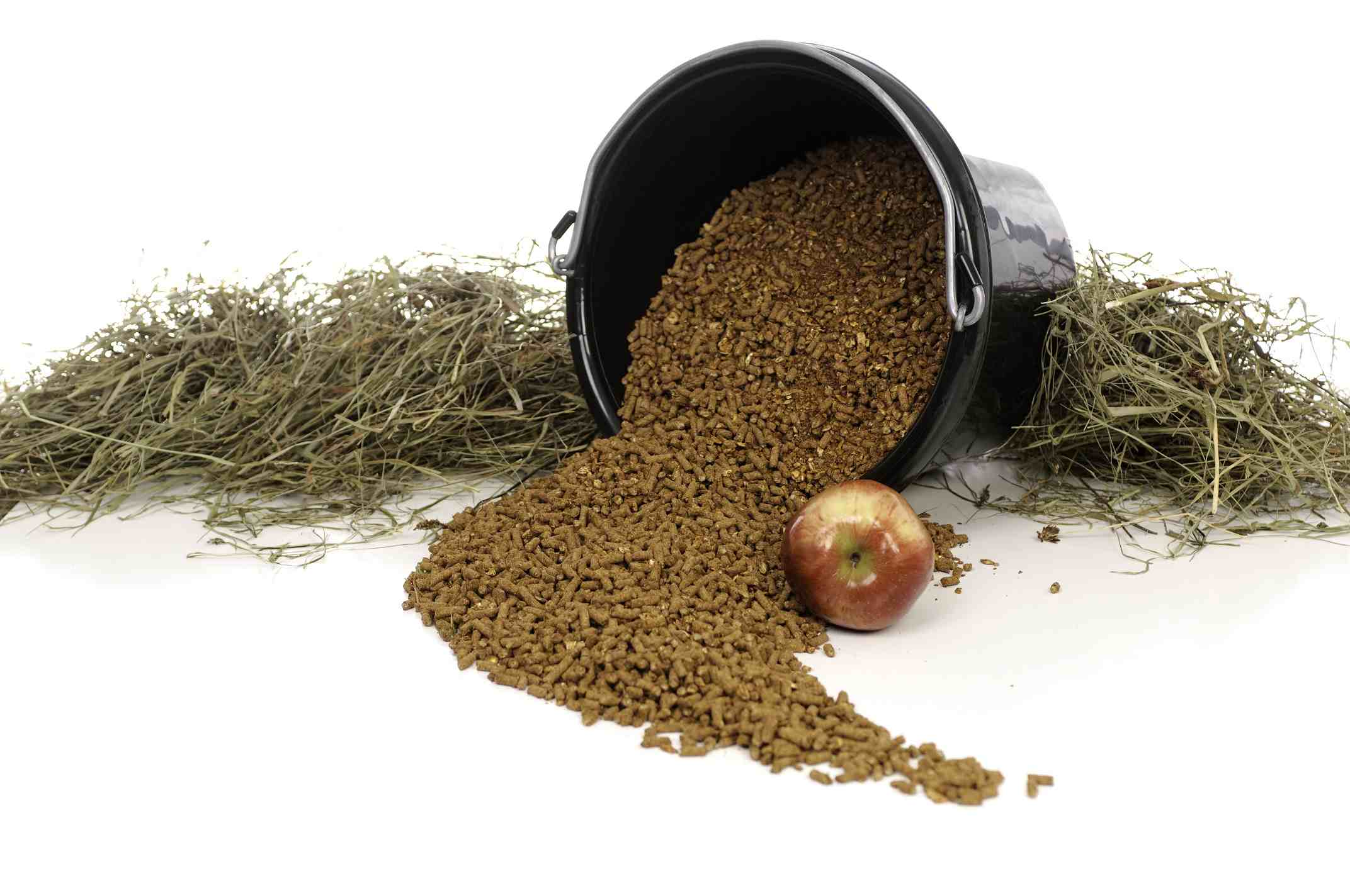 Grain spilling out of a black bucket near a pile of hay and one apple.