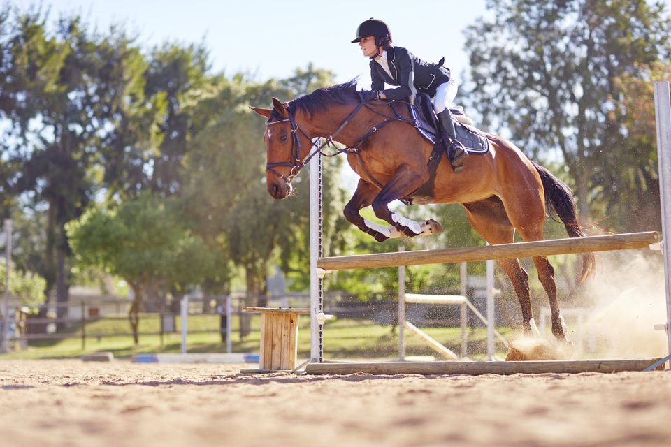 Horse jumping over an obstacle with a rider.