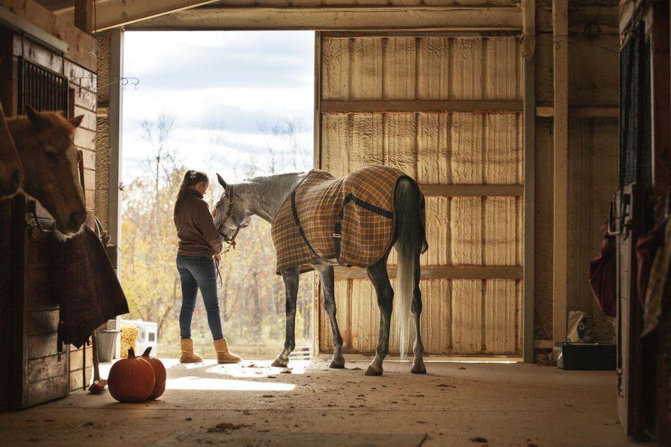 Chica adolescente cuidando a caballo en un establo