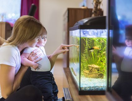Mother and baby looking at aquarium.