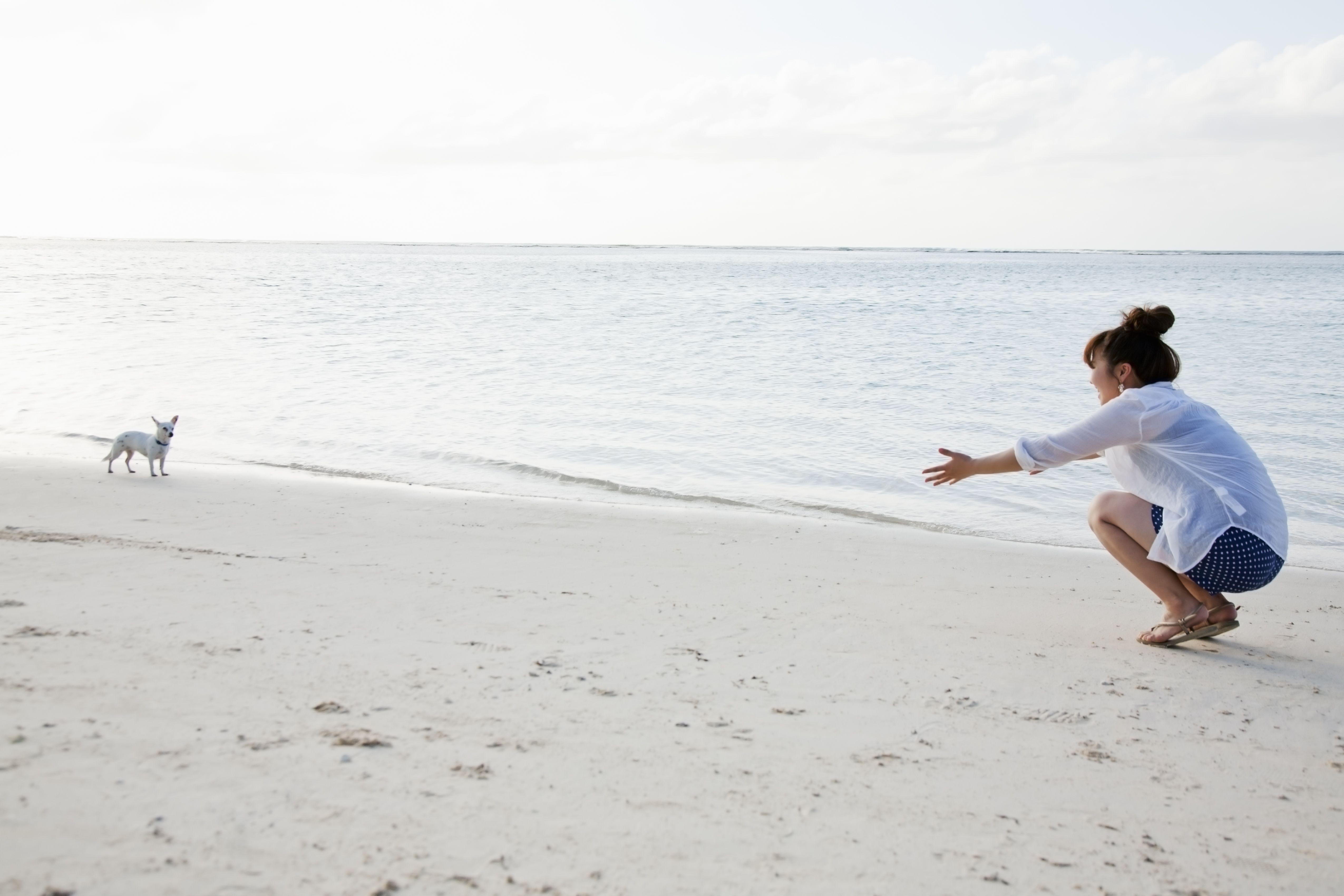Mujer en una playa que le enseña a un perro a venir mientras ambos están cerca del océano