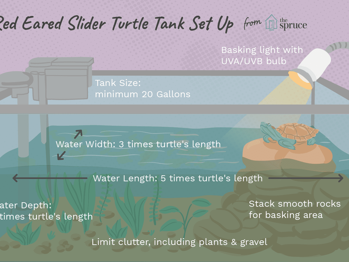 Turtle Tank Decorations For Sale  from www.thesprucepets.com