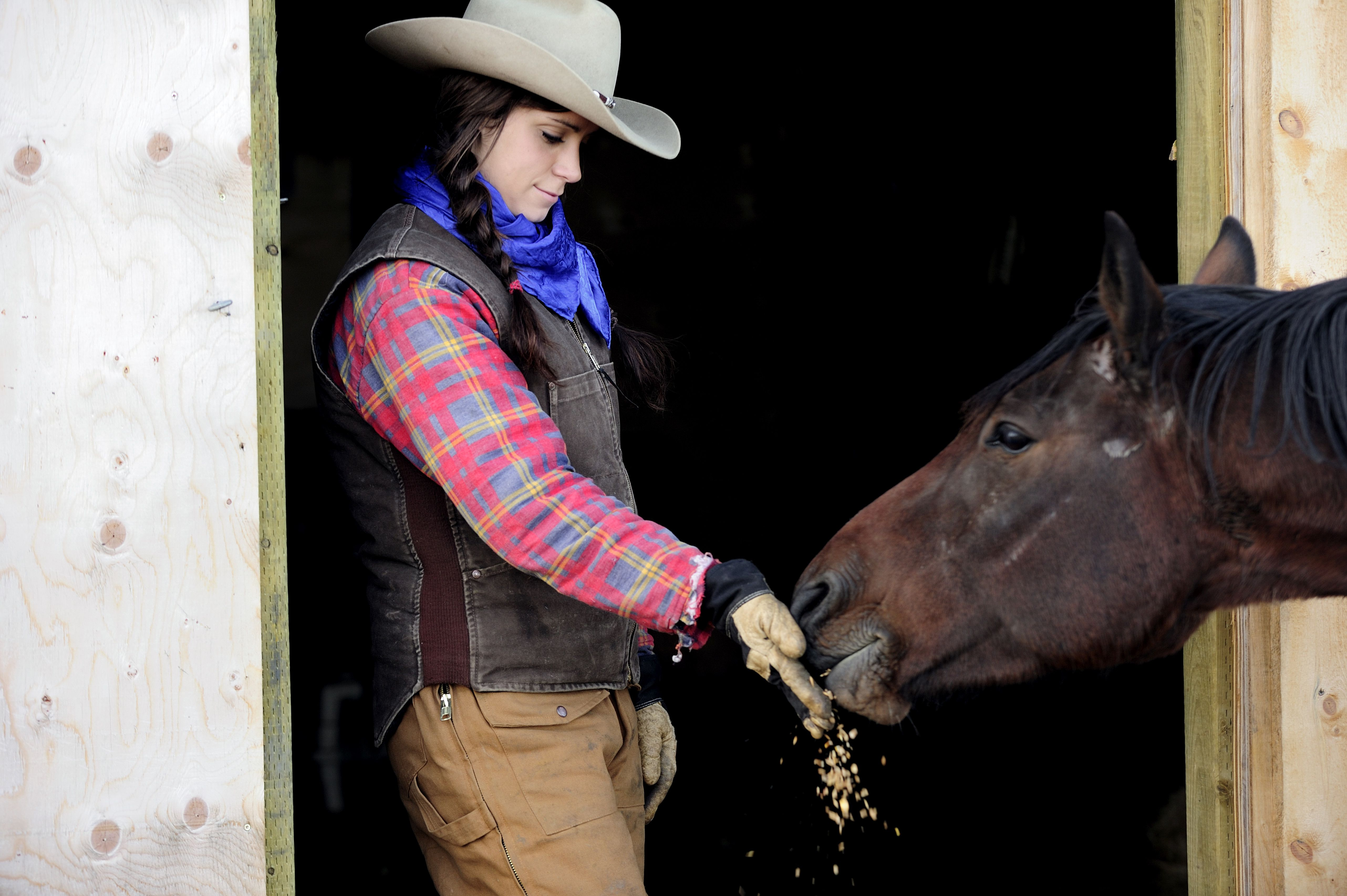 Cowgirl feeding oats to a horse