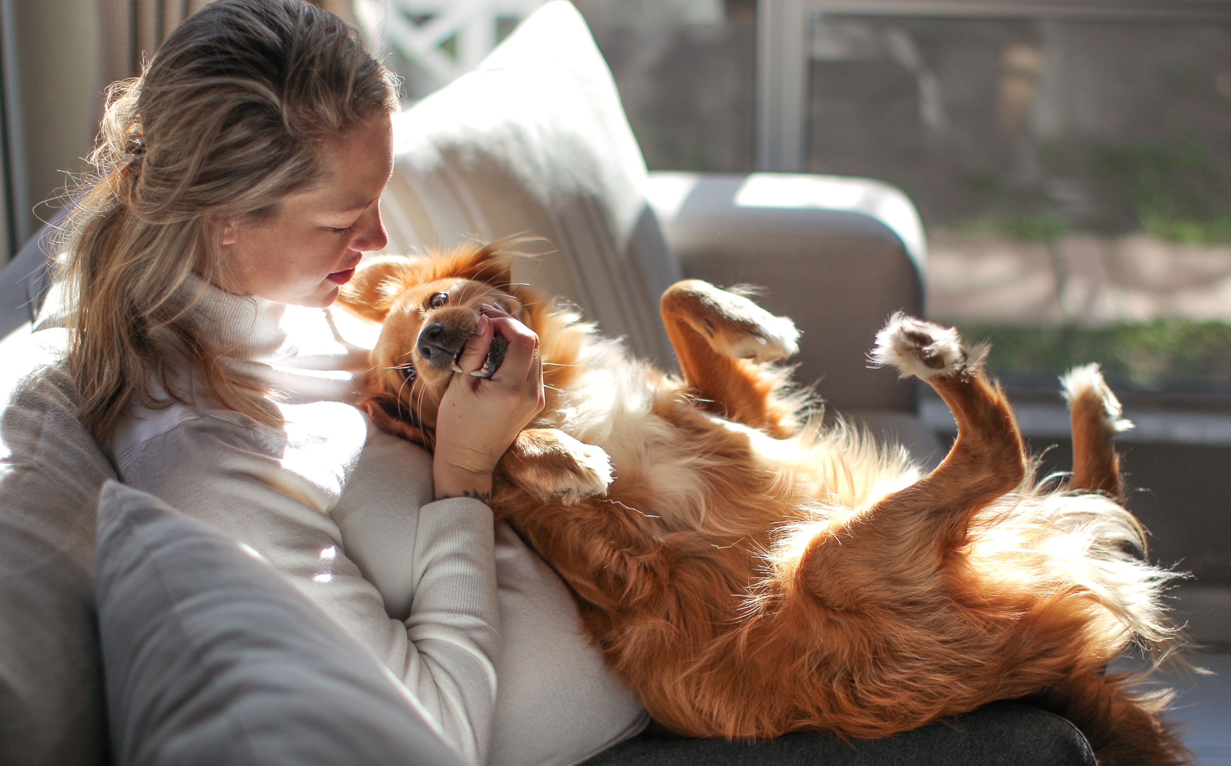 Living with Pets