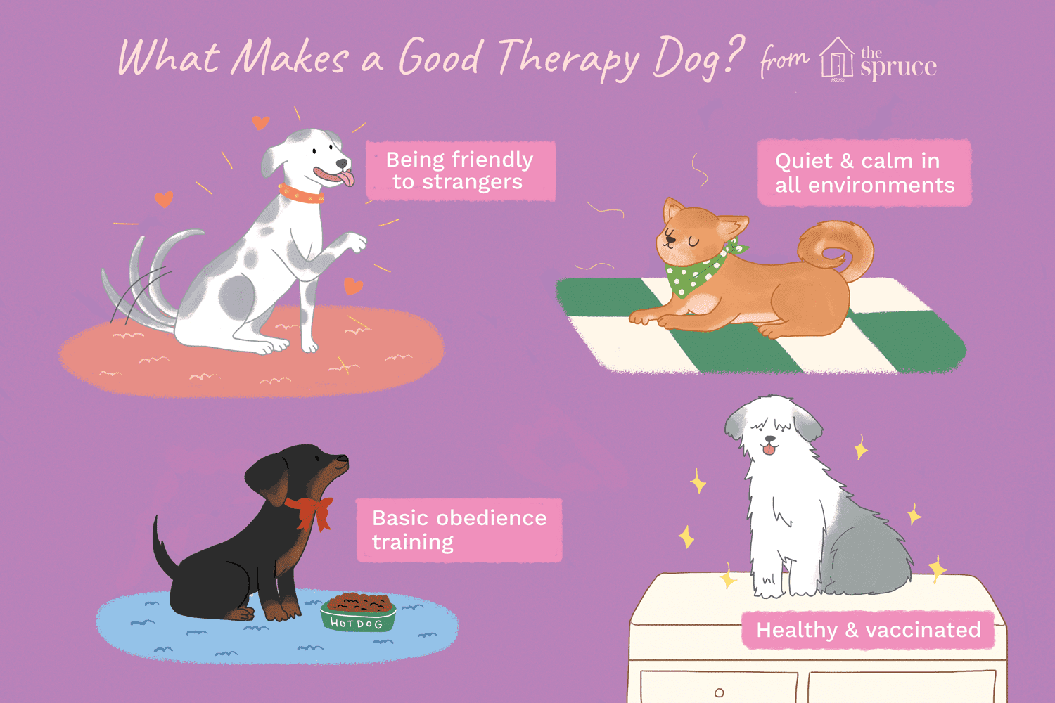 illustration of what makes a good therapy dog