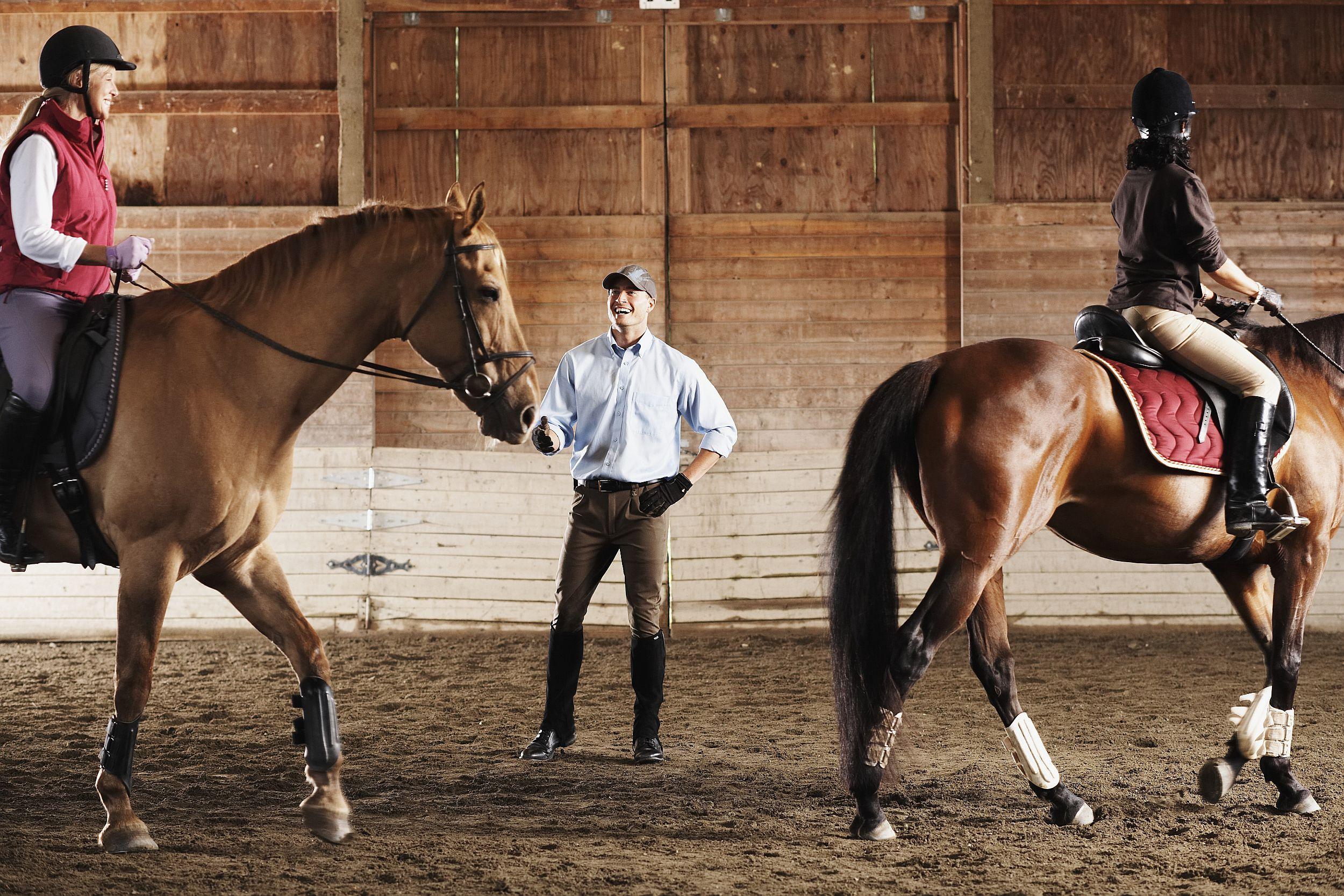 ridinglessonlg .jpg , Hombre saltando a caballo , Caballo con potro en el campo de hierba , Caballo Appaloosa , Hombre acicalando la cola del caballo .