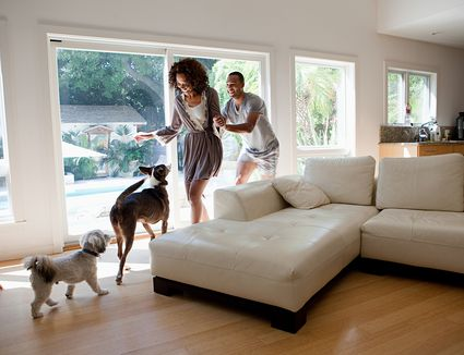 Couple in room with pet dogs