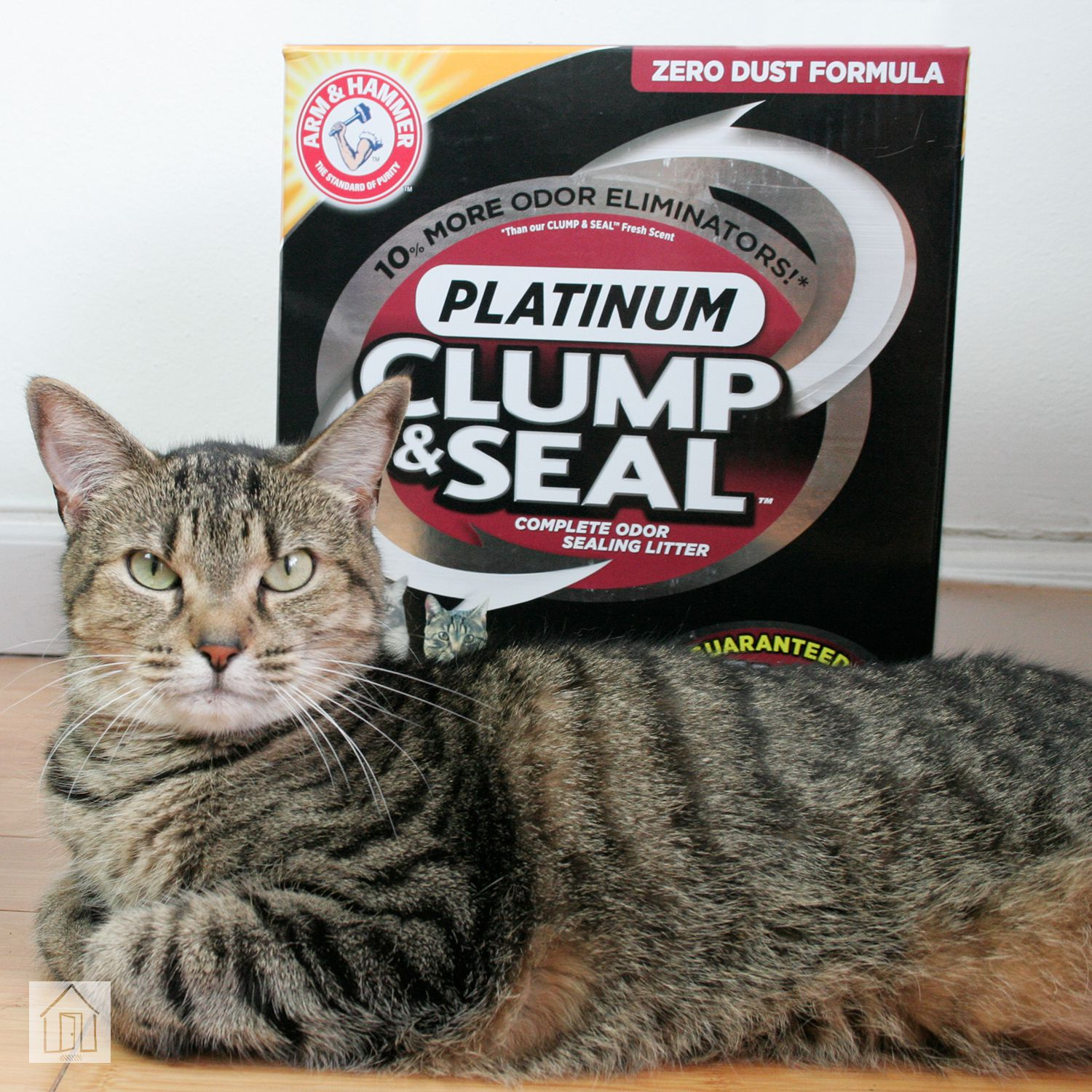 Arm Hammer Clump Seal Cat Litter Review Clumping Could Be Better