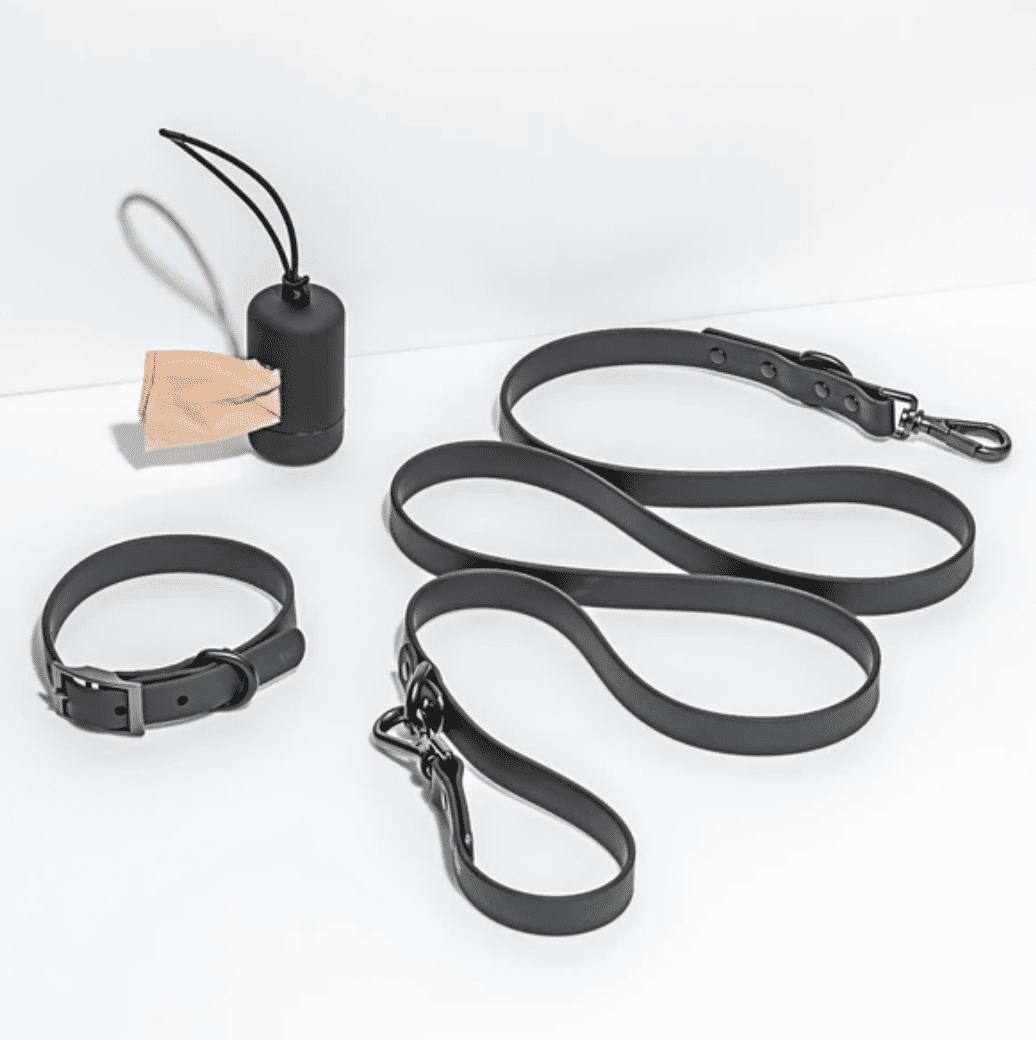 The Collar Walk Kit from Wild One