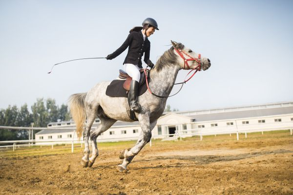 Cheerful young woman riding horse