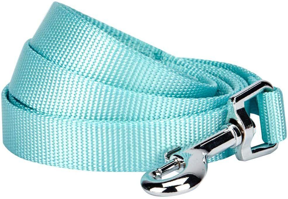 Blueberry Pet Classic Solid Color Dog Leash