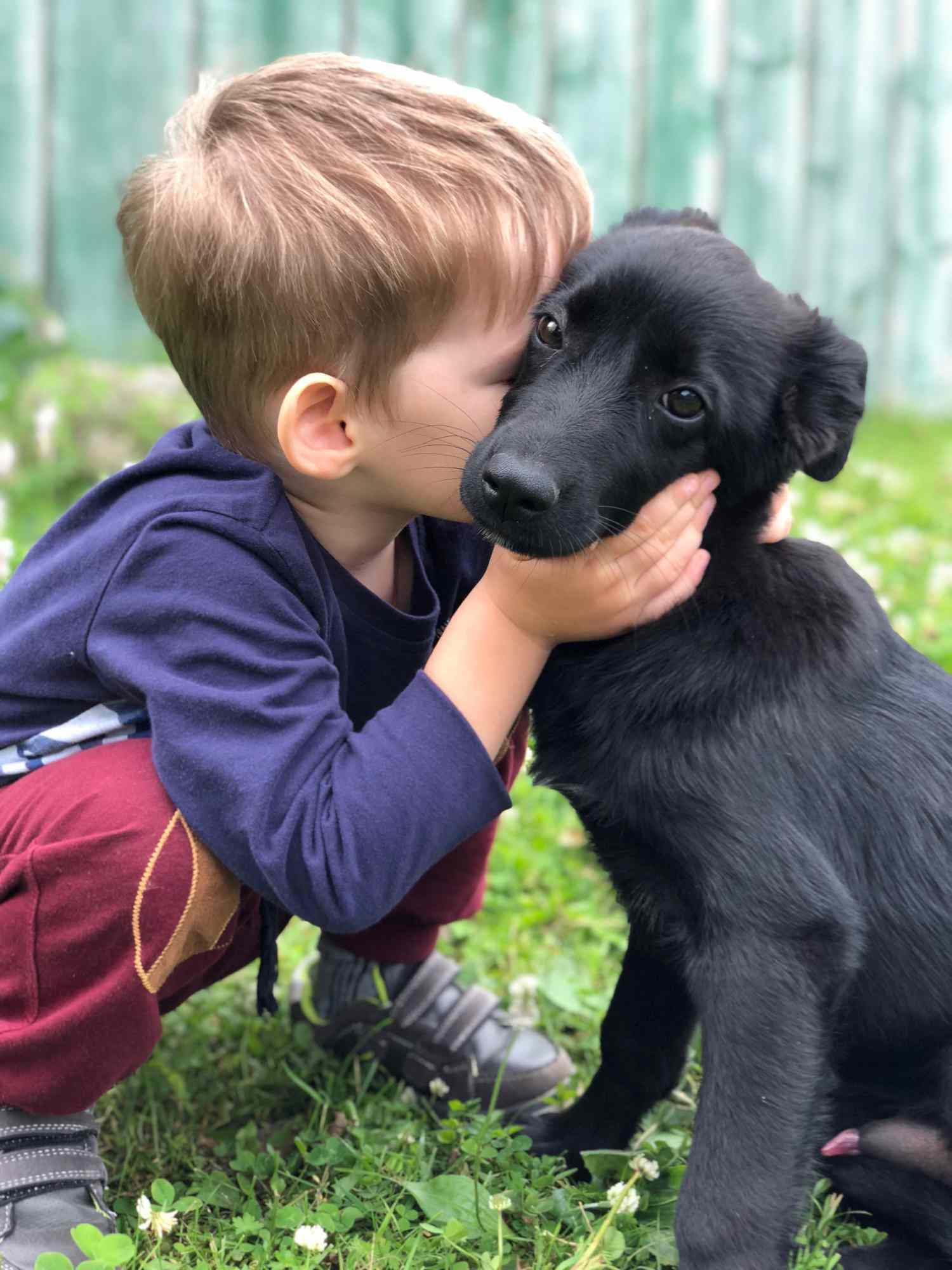 Boy kissing puppy