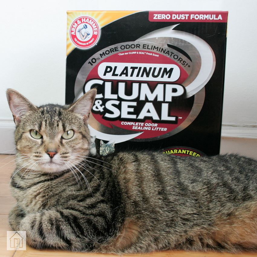 Arm & Hammer Clump & Seal Platinum Cat Litter