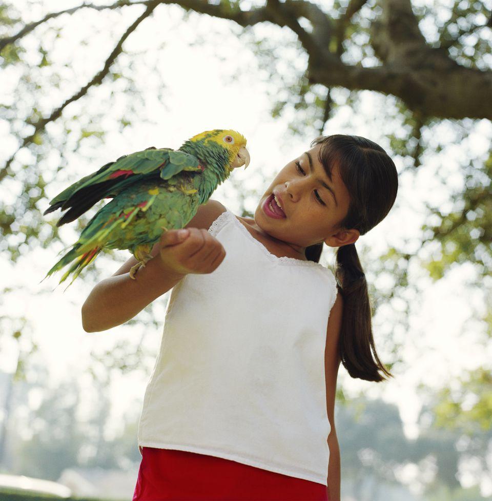 Girl holding parrot on arm