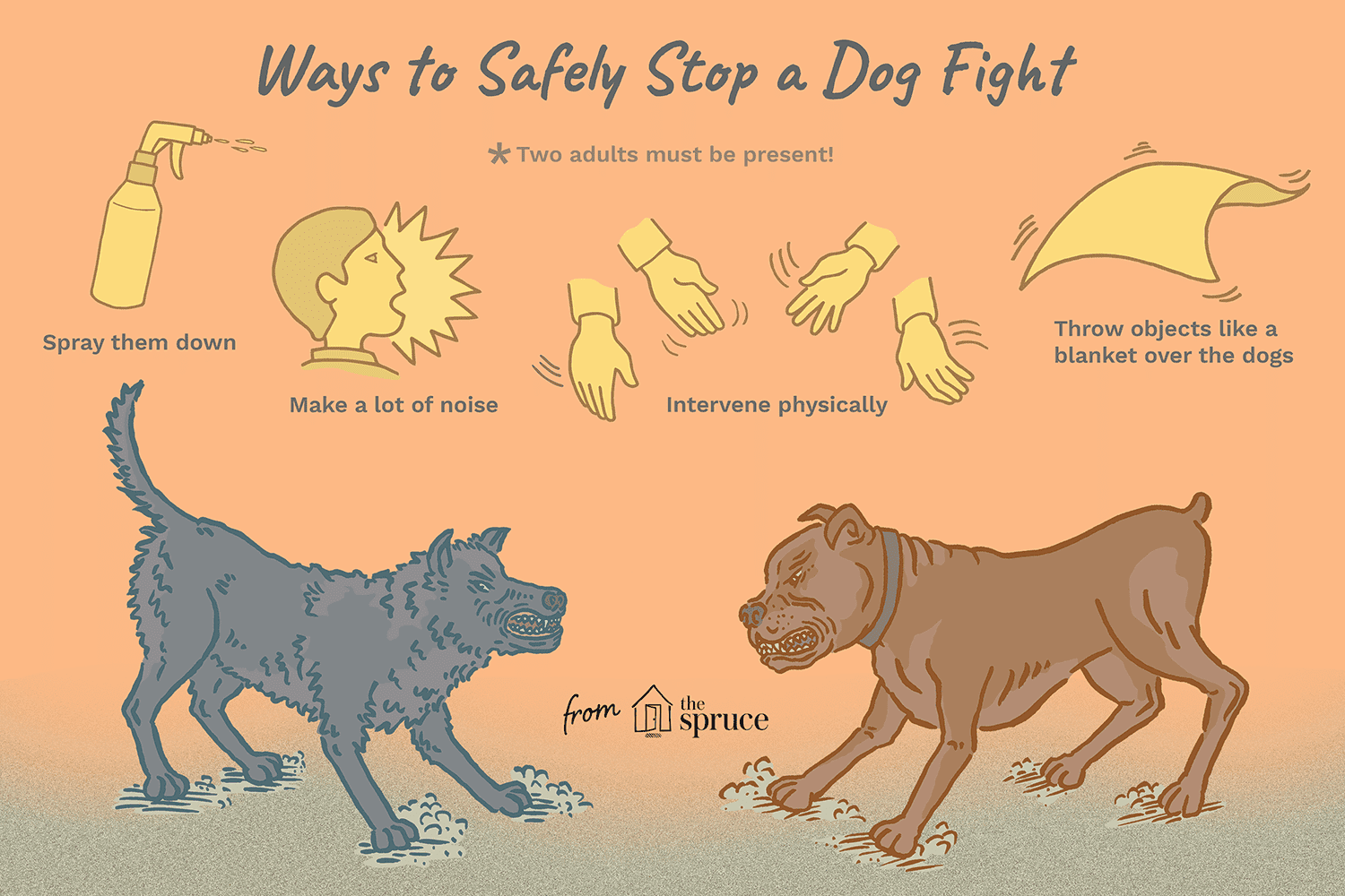 Illustration of how to stop a dog fight