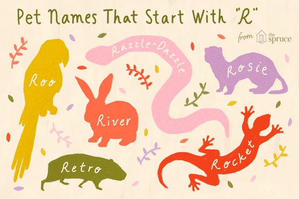 illustration of pet names that start with