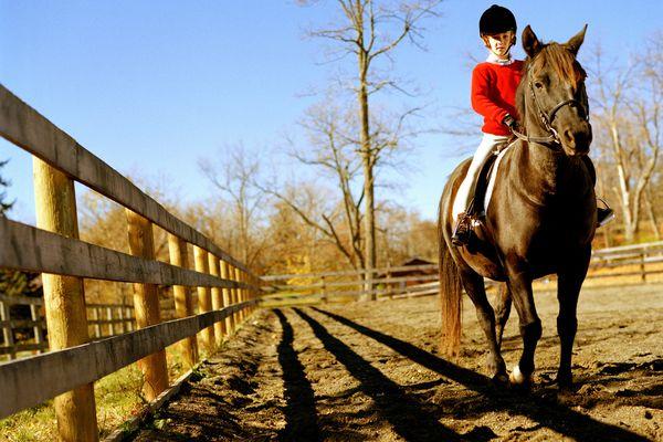Girl riding horse, wearing riding habit