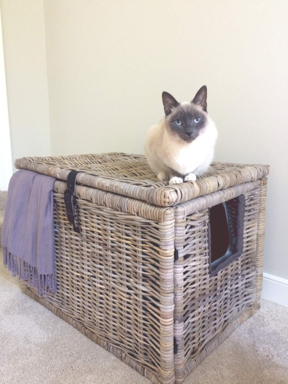 basket litter box