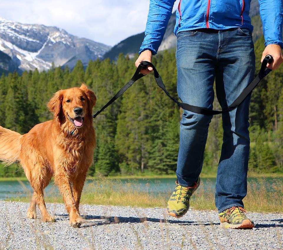 Leashboss Original - Heavy Duty Dog Leash