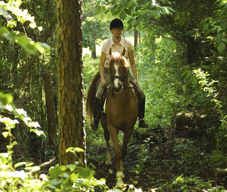 woman riding in woods