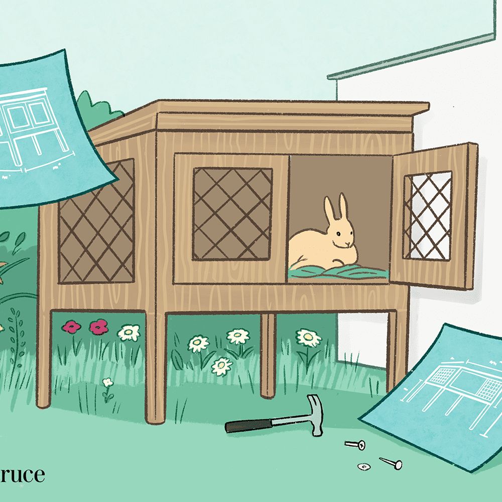 8 Completely Free DIY Rabbit Hutch Plans