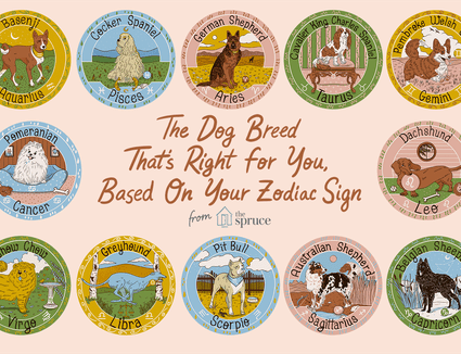 Dog breed illustrations for each zodiac sign