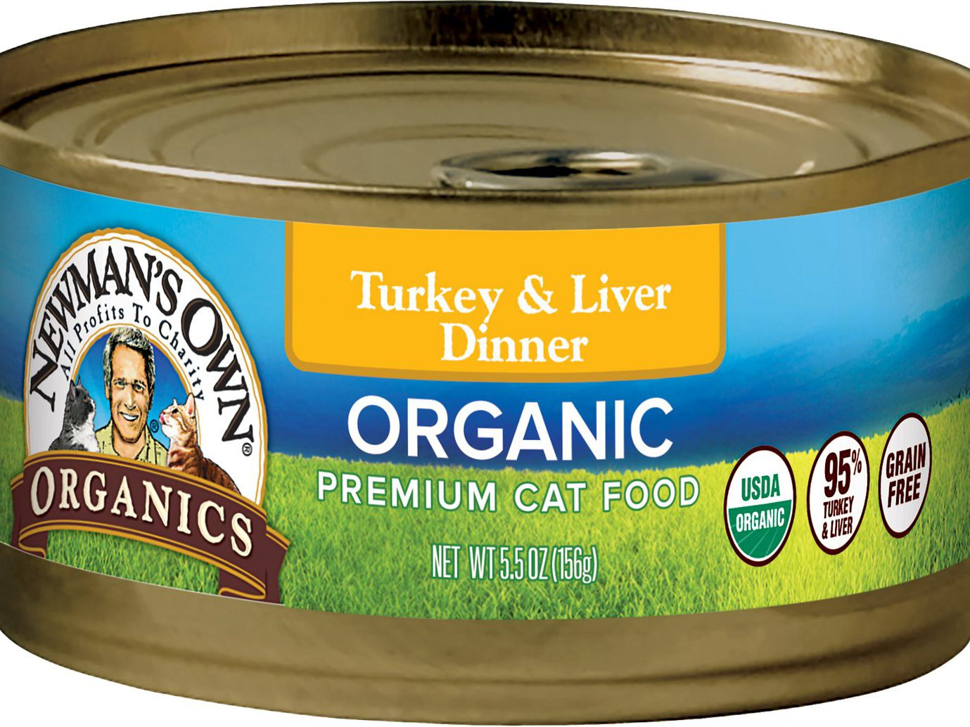 Best cat food you can buy