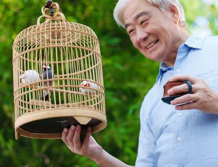 Recreational older men holding a cage in the yard