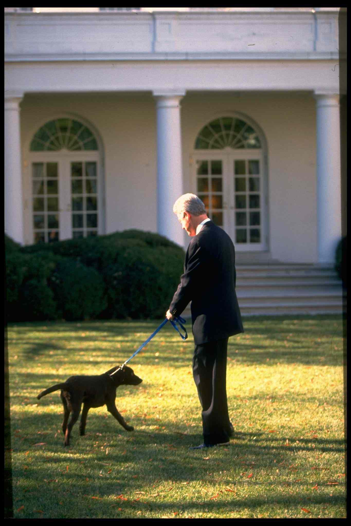 President Bill Clinton walking his labrador puppy