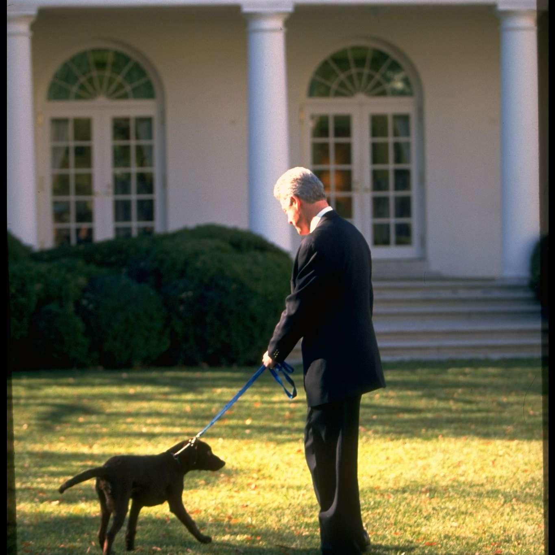 El presidente Bill Clinton paseando a su cachorro labrador