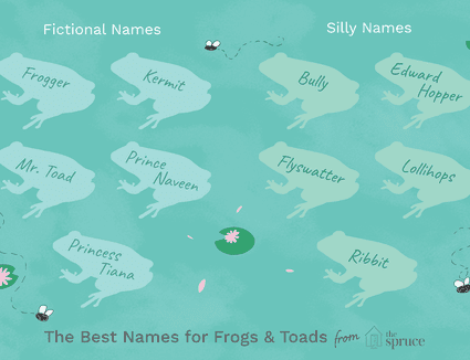 name ideas for frogs and toads