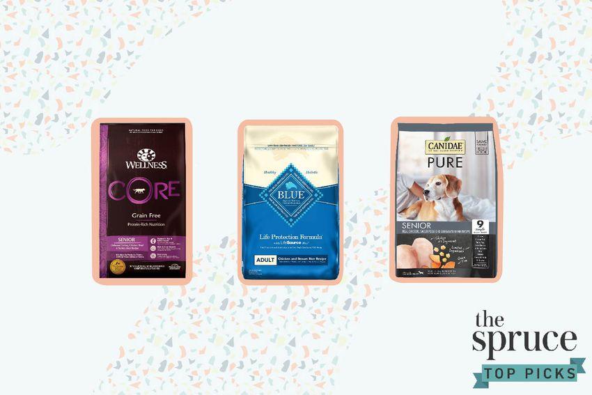 Foods for Older Dogs