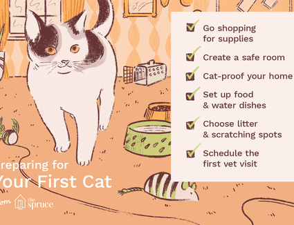 illustration of checklist for first cat
